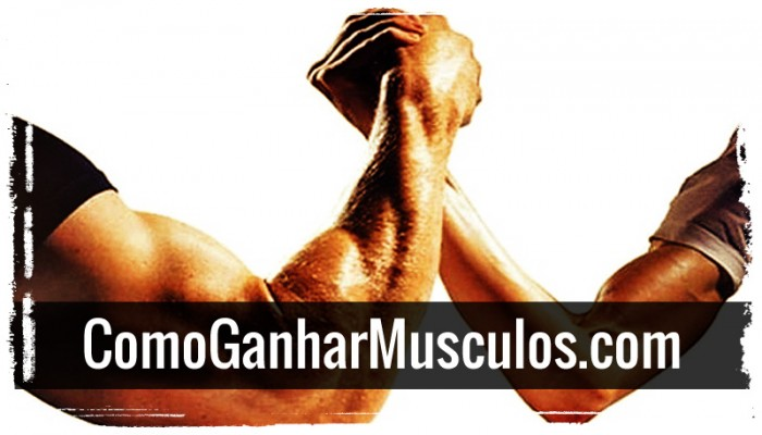 O Que é Catabolismo Muscular