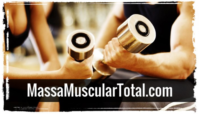 treinos para ganhar musculos